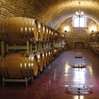 Azienda vinicola locale
